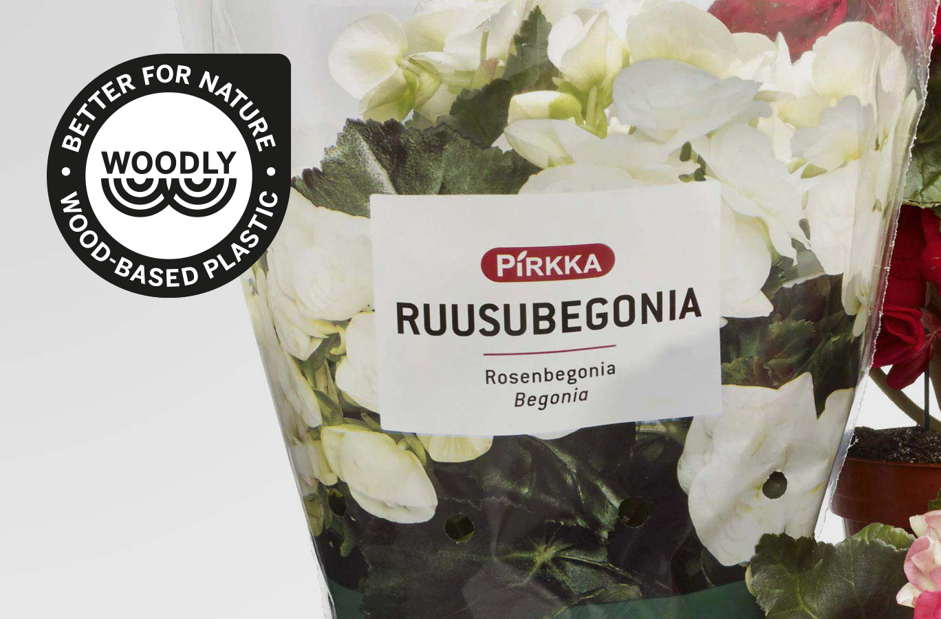 Woodly Pirkka Begonia packaging